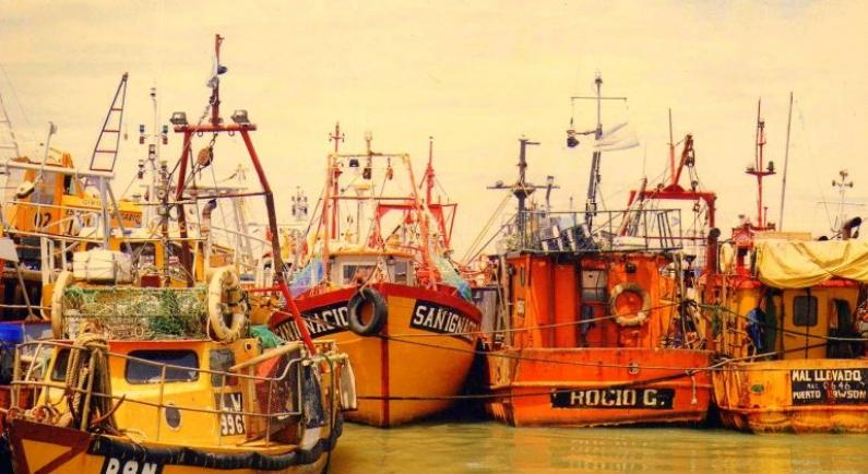 Chubut: Crecen las descargas de pesca en los puertos provinciales