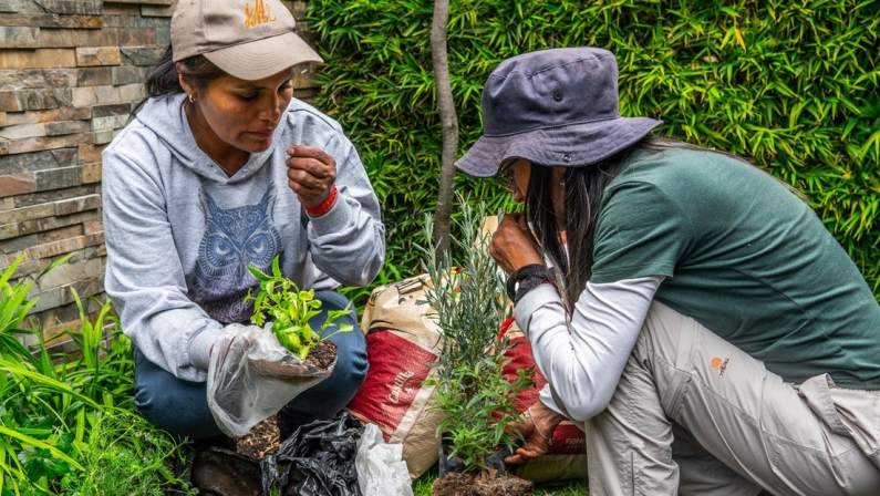 Ecuador: La escuela itinerante de agroecología que levanta huertos por doquier y satisface el comer sano.