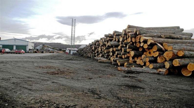 Tierra del Fuego: Cierra otro aserradero en Tolhuin, varios trabajadores quedan en la calle