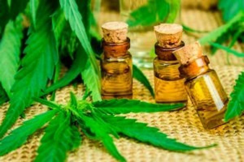 Tierra del Fuego: El gobierno promulgó la ley de uso medicinal del cannabis