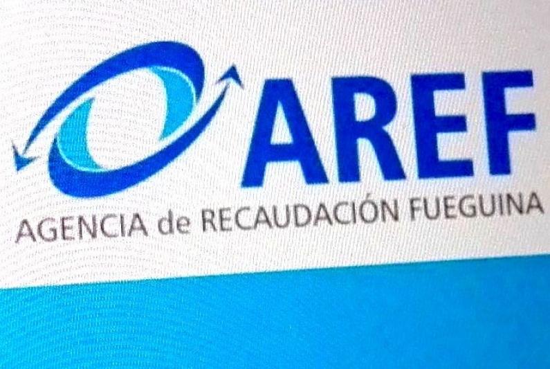 Tierra del Fuego: Renunció el director ejecutivo de la AREF