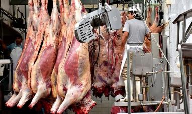 Aluvión de productores y empresas que suspenden faena y ventas por el cierre de exportaciones de carne
