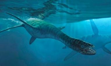 """Antártida Argentina: Hallaron restos similares a los del """"monstruo"""" del lago Ness"""