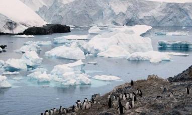Area protegida binacional en la Antártida