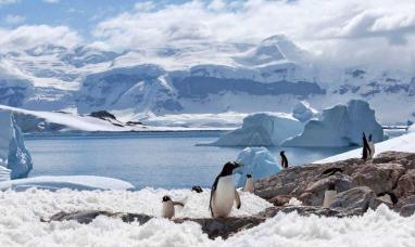 """Argentina, Chile y España llaman a la """"urgente"""" protección de las aguas de la Antártida"""