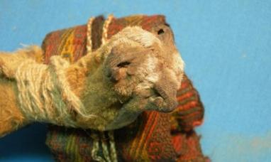 La ayahuasca ya se consumía hace mil años en rituales precolombinos
