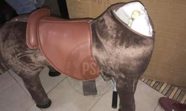 Cae banda internacional con 50 kilos de metanfetamina oculta en un caballo de juguete