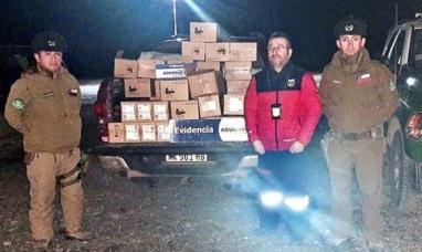 Chile: Detuvieron a un hombre que intentaba ingresar 418 celulares a Tierra del Fuego Argentina
