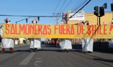 """Chile: En puerto Williams dicen """"No a las salmoneras"""""""