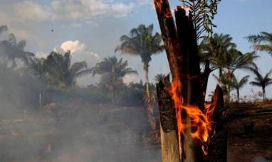 Chubut: Brigadistas viajan a combatir el incendio en el Amazonas