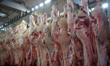 Chubut: Se robaron ocho medias reses de un frigorífico céntrico