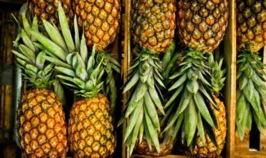 Colombia: La piña se abre paso en mercados canadienses