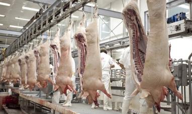 Récord histórico de exportación de carne porcina hacia China