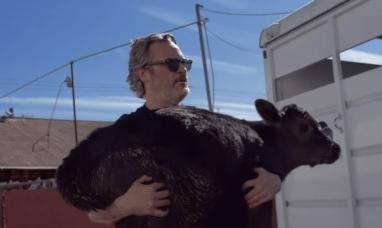 EE.UU.: Joaquín Phoenix rescató a una vaca y a su cría de un matadero