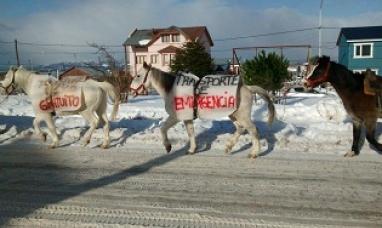 Lleva a personas en caballos antes la falta del transporte público