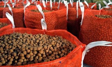 Neuquén: Productores exportaron nueces por primera vez
