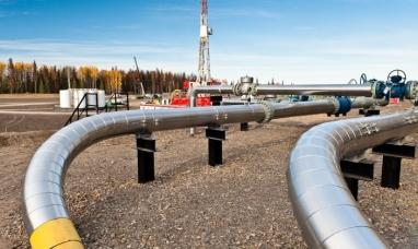 Neuquén: Total Austral exportará gas a Chile