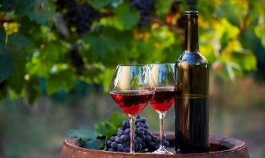 Observatorio vitivinícola argentino: El vino genera más dólares que la soja