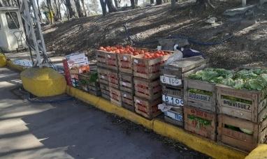 Por irregularidades, retuvieron más de dos toneladas de fruta que ingresaba a la Patagonia