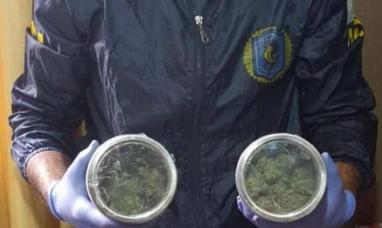 Santiago y otros siete distritos integraban una red de comercialización de semillas de marihuana, provenientes de Chile