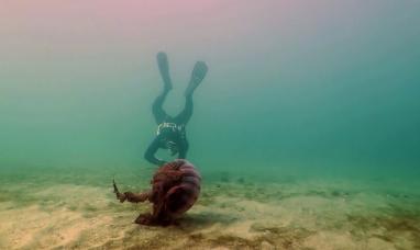 La serie Misterios Submarinos ganó el Premio FUND TV