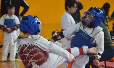 Tierra del Fuego: Mañana se disputará en Río Grande un torneo provincial de taekwondo
