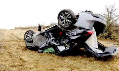 Tierra del Fuego: Conductor chocó contra un guanaco y resultó con lesiones
