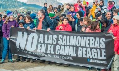 Tierra del Fuego: La fiscalía de estado rechazó pedido para anular ley contra la salmonicultura