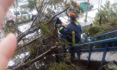 Tierra del Fuego: Fuerte temporal azotó a Ushuaia