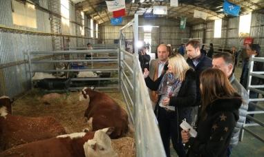 Tierra del Fuego: La gobernadora participó de la apertura de la IV exposición, jura y remate Hereford