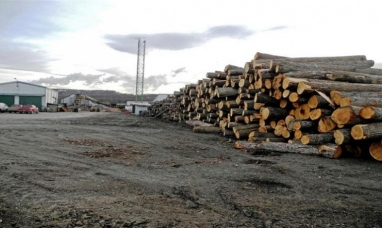 Tierra del Fuego: Gobierno acompaña a las familias damnificadas por cierre de aserradero