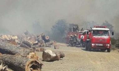 """Tierra del Fuego: """"Hay una negligencia de la empresa al realizar la quema en un día de viento"""", dijo el secretario de ambiente."""