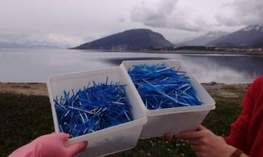 Tierra del Fuego: Miles de hisopos llegan a las costas de Ushuaia a través de la red cloacal