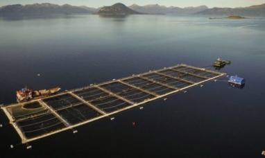 """Tierra del Fuego: Ministro de desarrollo de nación consideró como """"una decisión equivocada"""" la de prohibir la cría de salmones"""