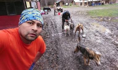 Tierra del Fuego: Procesaron y embargaron a responsable de centro invernal por maltrato animal