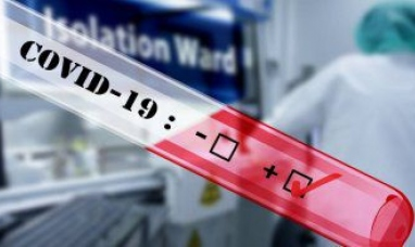 Tierra del Fuego: Se registraron 81 nuevos casos de coronavirus
