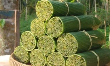 Vietnam: Usan hierbas para elaborar pajitas biodegradables como alternativa del plástico