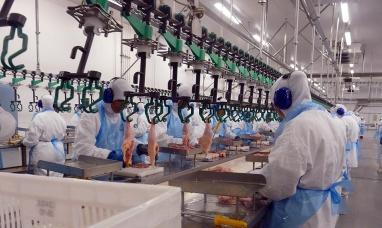 Vuelven las exportaciones de carne aviar a la unión europea