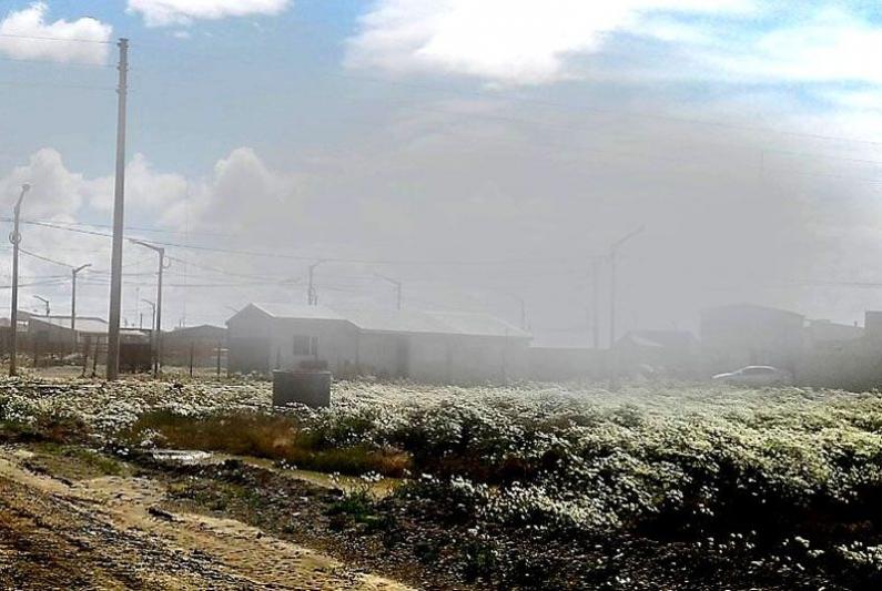 Tierra del Fuego: Río Grande otra vez afectada por polvo en suspensión