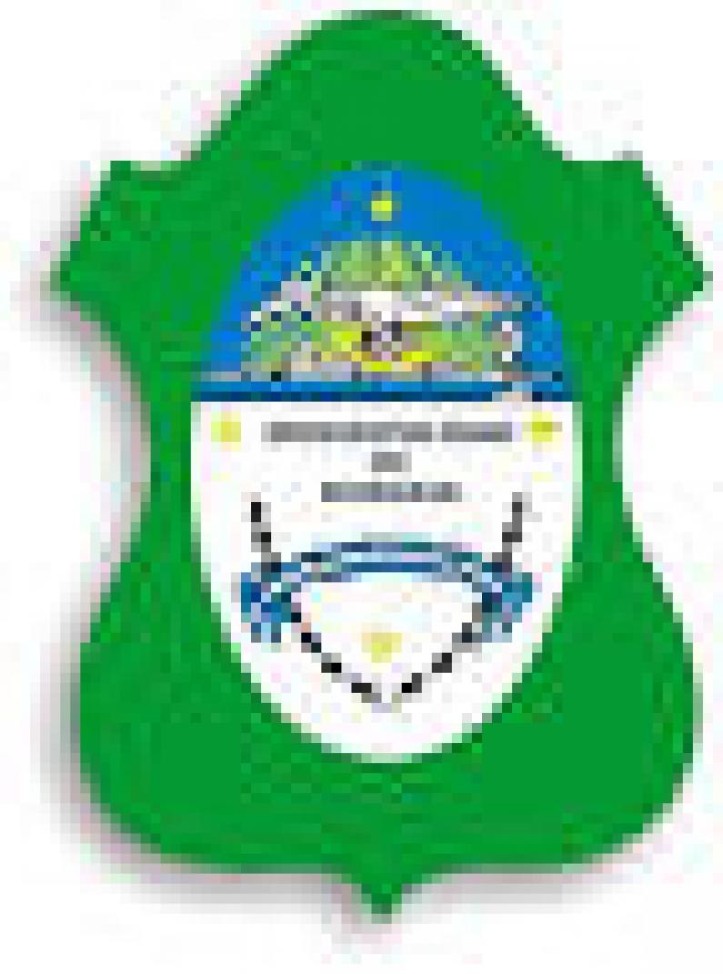 Tierra del Fuego: La municipalidad de Ushuaia decretó asueto administrativo para el viernes 13