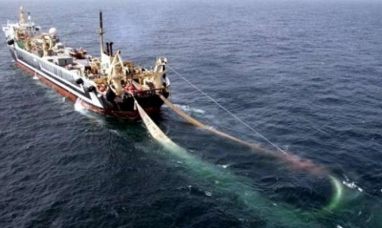 Dictaminan que debe aplicarse el sistema jurídico argentino en causa de trata a bordo de un pesquero que amarró en Malvinas