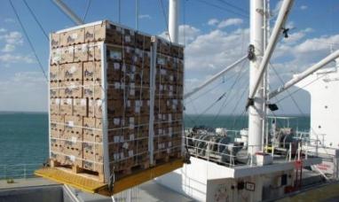 Río Negro: Se abre la posibilidad de exportar carne a Medio Oriente