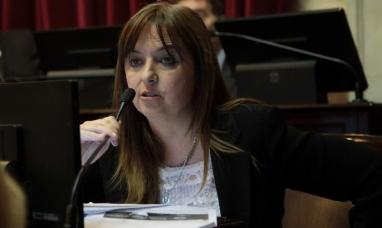Río Negro: Senadora propone crear una comisión para el cumplimiento de la ley de cruce por aguas argentinas