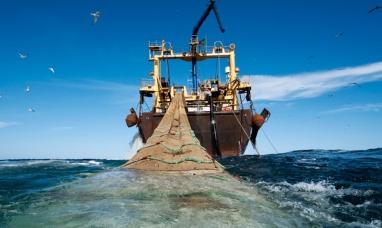 Tierra del Fuego: Tercera entre las provincias con mayores desembarcos marítimos